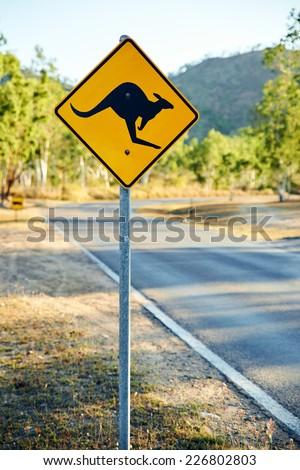 Warning road sign with kangaroo shape - stock photo