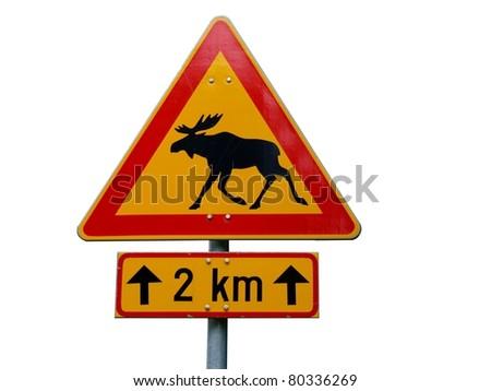 Warning sign, moose - stock photo
