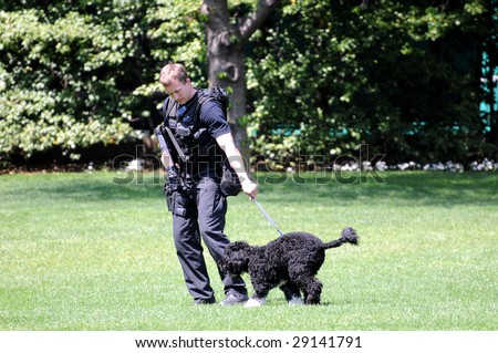 WASHINGTON - April 24: Policeman catches President Obama's First dog Bo, who had escaped and ran towards the south end of the White House South lawn in Washington DC on April 24, 2009. - stock photo