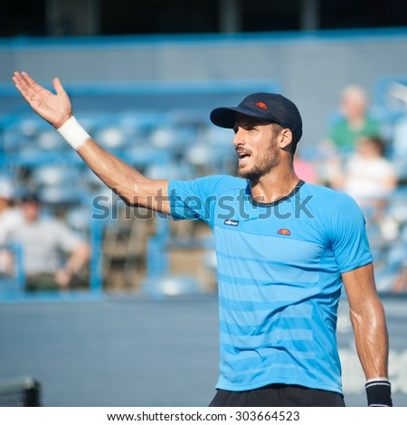 WASHINGTON - AUGUST 5: Feliciano Lopez (ESP) disputes a call during his winning match against Lleyton Hewitt (AUS, not pictured) at the Citi Open tennis tournament on August 5, 2015 in Washington DC   - stock photo