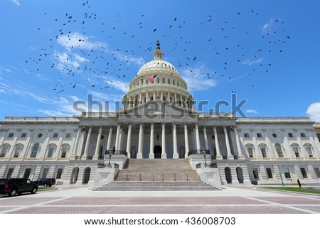 Washington D.C. - United States National Capitol and birds. - stock photo