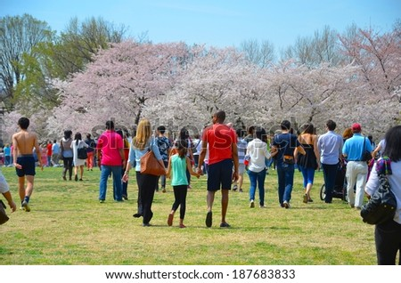 WASHINGTON, DC - APRIL 14: Cherry Blossom Festival on April 14, 2012 in Washington DC,USA. The festival is a spring celebration in Washington, D.C.and people from all over the world come to visit. - stock photo