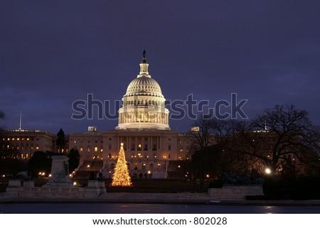 Washington DC Capital Christmas Tree Horizontal - stock photo