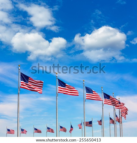Washington Monument flags circle in DC United States USA - stock photo