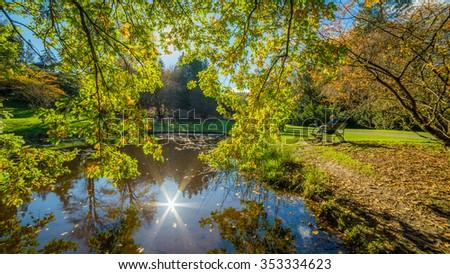 Washington park arboretum, Autumn - stock photo