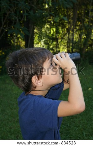 Watching birds - stock photo