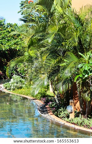 Water and trees in a tropical garden - stock photo