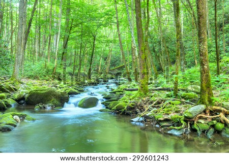 Water cascades over boulders covered in green moss. Smoky Mountains National Park. - stock photo