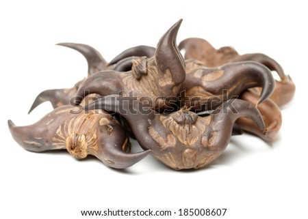 Water chestnut (Trapa bispinosa Roxb) on white background  - stock photo