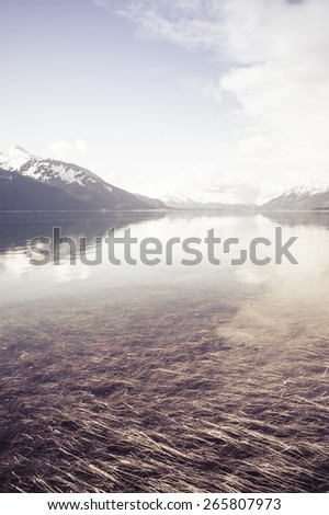 Water covering beach grass on the Chilkat inlet in Alaska as the tide comes in with vintage coloration. - stock photo