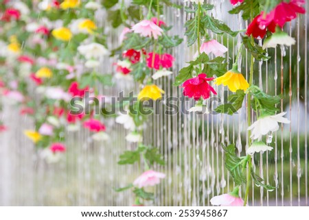water drop on flower - stock photo
