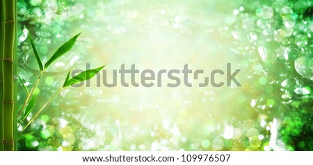 water droplets and bamboo. natural backgrounds - stock photo