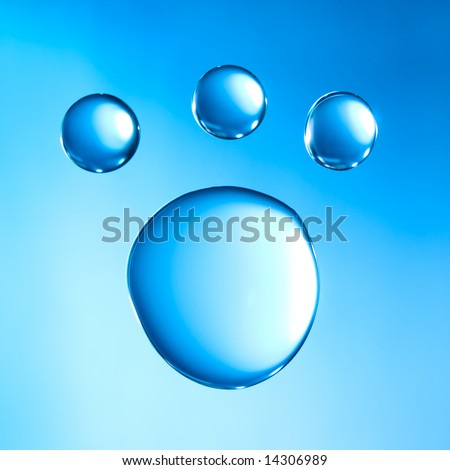 Water droplets arranged as an animal  footstep - stock photo