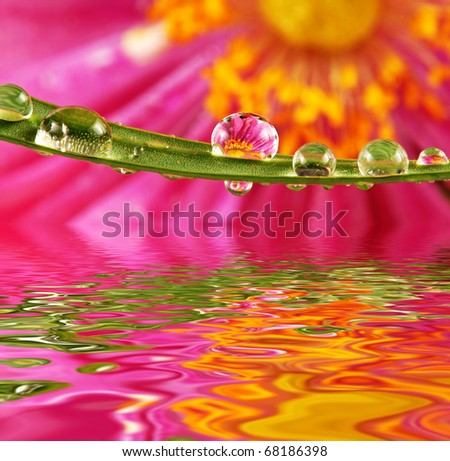 water drops and mirroring in water - stock photo