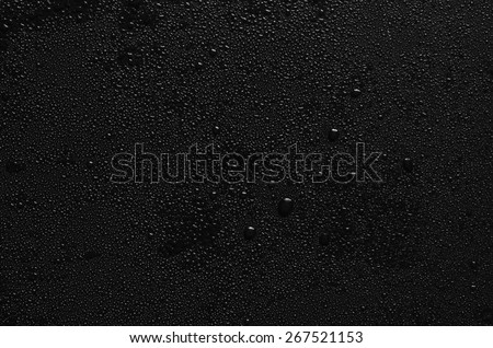 water drops on black background. Macro. - stock photo