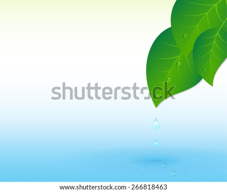 Water drops, splash and leaves.  - stock photo
