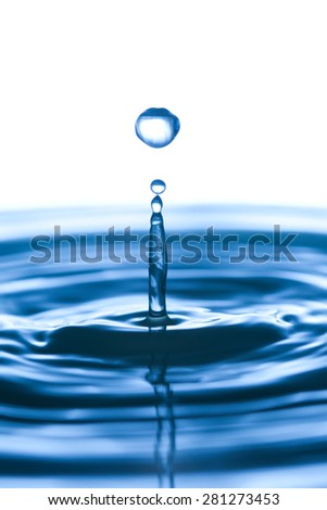 Water drops. splashing. white background. copy space. macro view, toned photo. soft focus. isolated - stock photo