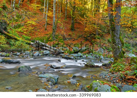 water fall in the autumn forest  - stock photo