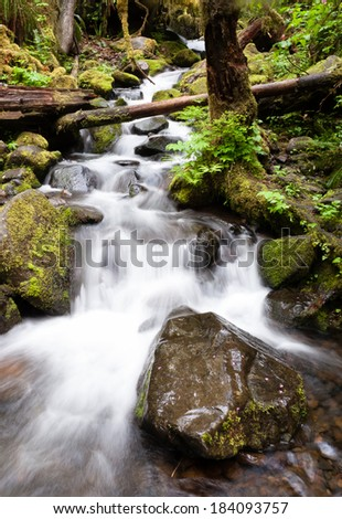 Water falls down towards the trail on a forest hike - stock photo