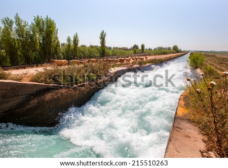 water flowing in an irrigation canal with sheep herd - stock photo