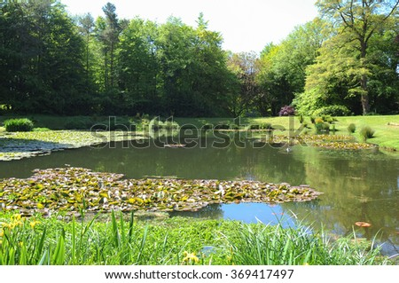 Water Lily Pond near the Rural Village of Arlington in North Devon, England, UK. - stock photo
