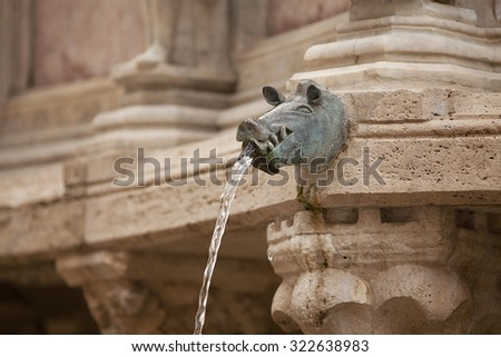 Water spout of a hogs head on a building in of the old township of Perugia in the Umbrian region of Italy - stock photo