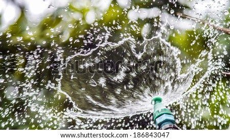 Water spraying from green sprinkler - stock photo