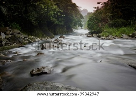 water spring in forest - stock photo