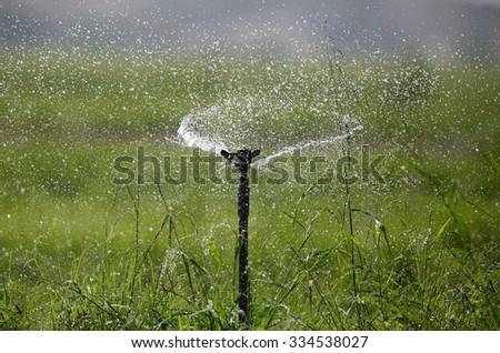 Water sprinkler spreading water - stock photo