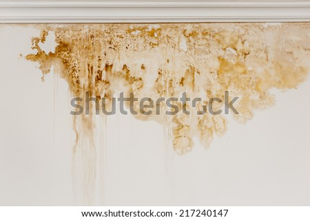 Water stain on the interior wall of an old house. - stock photo