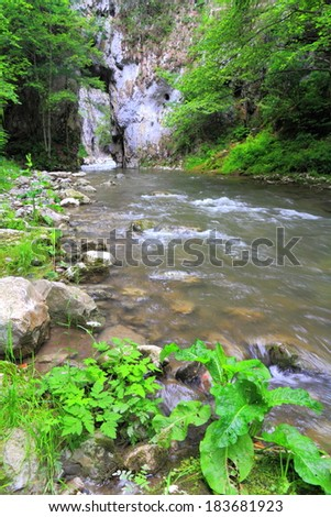 Water stream flowing between gorge walls and green vegetation - stock photo