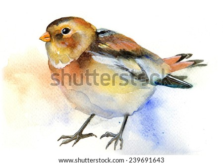 watercolor art illustration with sparrow bird - stock photo