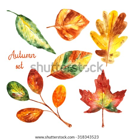 Watercolor autumn leaves collection, set including oak, maple, birch, elm, tree branch - stock photo