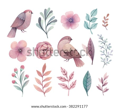 Watercolor birds and flowers. Perfect for greeting cards or invitations - stock photo