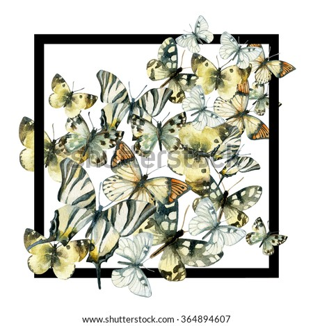 Watercolor butterfly frame. Hand painted butterflies in black frame on white background - stock photo