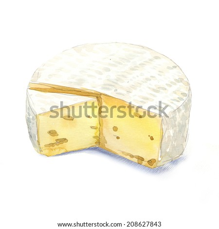 watercolor cheese brie on a white background - stock photo