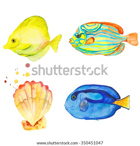 Watercolor colorful set fishes and shells. Watercolor splashes splatters. Hand drawn. Blue Tang Fish. Yellow Tang Fish. Blue Striped Angelfish - stock photo
