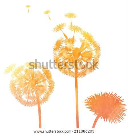 watercolor dandelion background - stock photo
