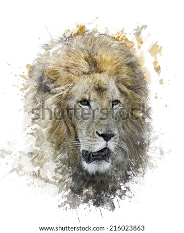 Watercolor Digital Painting Of Lion Head - stock photo