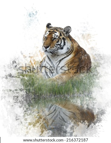 Watercolor Digital Painting Of Tiger - stock photo