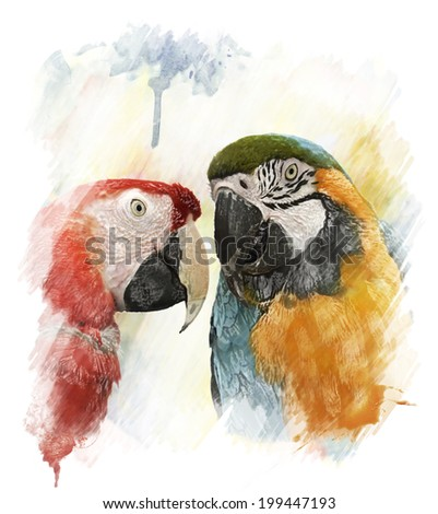 Watercolor Digital Painting Of Two Colorful Parrots - stock photo