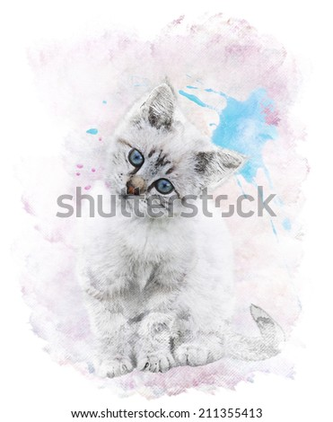 Watercolor Digital Painting Of  White Kitten - stock photo