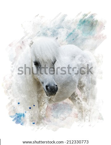 Watercolor Digital Painting Of   White Pony - stock photo