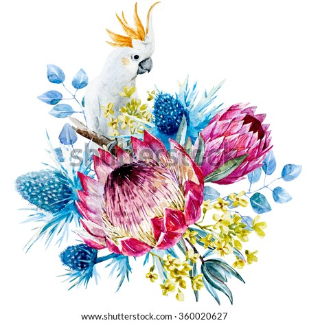 watercolor floral composition protea flower, blue thorn, small yellow flowers, floral bouquet, white cockatoo parrot - stock photo