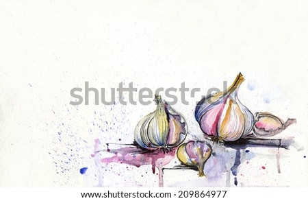Watercolor garlic group on white background with watercolor splashes - stock photo