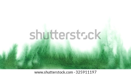 Watercolor grass on white background. Hand painted abstract texture. - stock photo