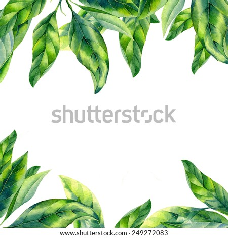 watercolor green leaves on white background - stock photo