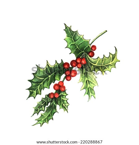 Watercolor Holly. Hand painting. Illustration for greeting cards, invitations, and other printing projects. - stock photo