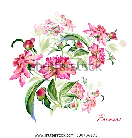 Watercolor illustration of a bouquet of peonies with buds-1. Watercolor illustration of a hand-drawn from nature. - stock photo
