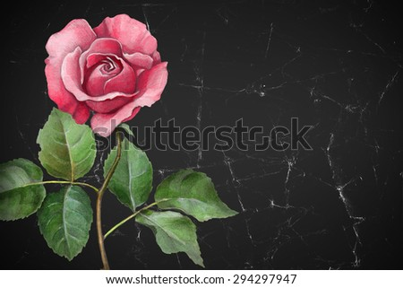 Watercolor illustration of a rose flower. Perfect for greeting cards or invitations  - stock photo